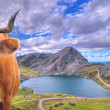 Stock Photo: CovadongLakes, Asturias.