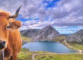Covadonga Lakes, Asturias. — Stock Photo