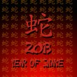 Stock Photo: Year of snake.
