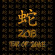 Year of snake. — Stock Photo