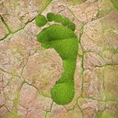 Ecological footprint. — Foto de Stock