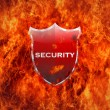 Stock Photo: Security shield.