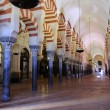 Stock Photo: Mosque Cathedral of Cordoba.