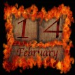 Stock Photo: Burning wooden calendar February 14.