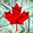 Vintage Canada flag. — Stock Photo