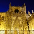 Seville cathedral. — 图库照片