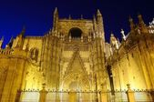 Catedral de sevilla. — Foto de Stock