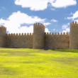 Walls of Avila. — Stock Photo #50920403