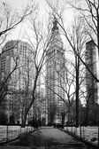 Winter in Madison Square Park - New York City — Stock Photo