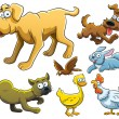 Animals Collection — Stock Vector #9455212