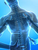Spine pain concept — Stock Photo