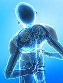 Spine pain — Stock Photo