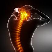 Male Body Backbone Scan — Stock Photo
