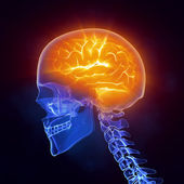 X-ray brain medical scan side view — Stock Photo