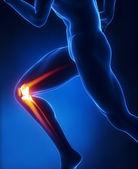 Running man knee anatomy — Stock Photo