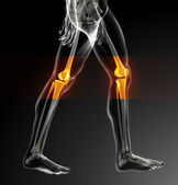 Human knee scan — Stock Photo
