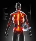 Human body scan — Stock Photo