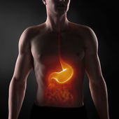 Focused on man digestive system — Stock Photo