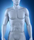 解剖位置的男人 — 图库照片