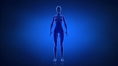 Sport and healthy lifestyle female concept — Video Stock