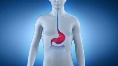 Male taking pill for stomach disease — Wideo stockowe