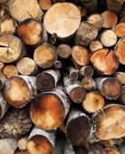 Yakacak odun arka plan — Stok fotoğraf