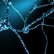Nerve Cells And Neuronal Network - Stok fotoraf