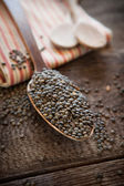 French lentils — Stock Photo