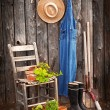 Gardener's tools — Stock Photo