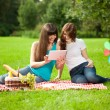 Two women in the park on a picnic and Tablet PC — Stock Photo #15447417