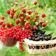 Stock Photo: Berry mix