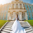 Luxury bride near palace — Stok fotoğraf