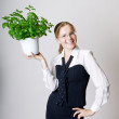 Successful business woman — Stock Photo #27074943