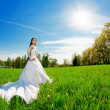 Bride on a field in the sunshine — Foto Stock