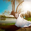 Bride on a field in the sunshine — Foto de Stock