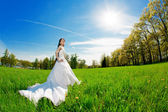 Bride on a field in the sunshine — Stock Photo