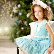 Little winter fairy tale girl — Stock Photo #27082609