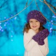 Little winter fairy tale girl — Stock Photo #27082865