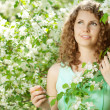 Young beauty woman in blooming garden — Stock Photo #27086593