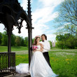 Young  bride and groom in love — Foto Stock