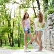 Beautiful young twins outdoors — Stock Photo #31005771