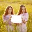 Twins holding white blank poster  outdoors — Stock Photo