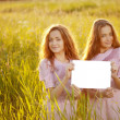 Twins holding white blank poster outdoors — Stock Photo #31005957