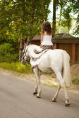 Young woman on a horse. Horseback rider, woman riding horse — Stok fotoğraf