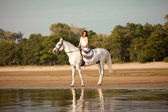 Young woman on a horse. Horseback rider, woman riding horse on b — Foto Stock