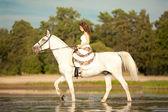 Young woman on a horse. Horseback rider, woman riding horse on b — Foto de Stock
