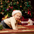 Baby near the Christmas tree. Little boy celebrating Christmas. — Stock Photo #46350517