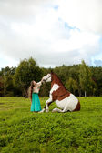 Beautiful young woman with a horse in the field. Girl on a farm  — Stock Photo