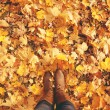 Conceptual legs in boots on the autumn leaves. Feet shoes walkin — Stock Photo #51085365