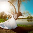 Bride on a field in the sunshine — Stock Photo #51085659